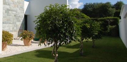 paisajismo cadiz, seville, malaga, andalusia